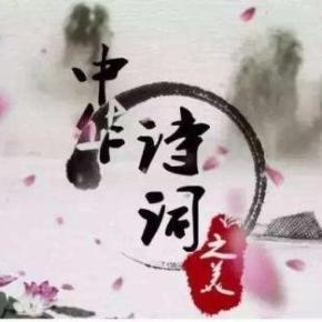 中华诗词大会-名师解读诗词